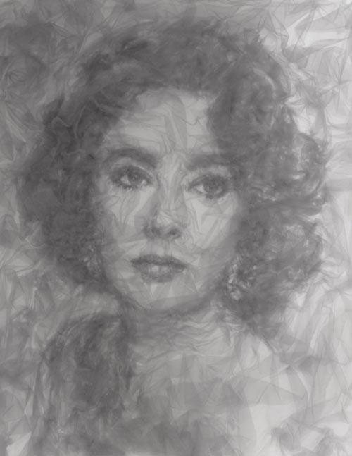 Tulle portrait - Elizabeth Taylor by Benjamin Shine