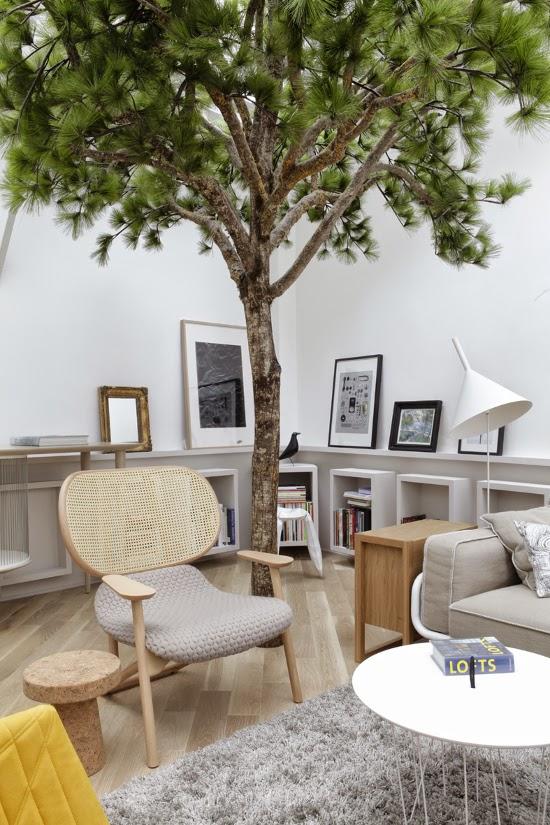 Un albero nel living